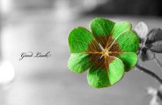 Слова, которые влияют на удачу