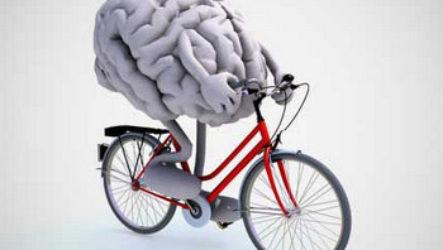 Нейробика или как улучшить память с помощью упражнений