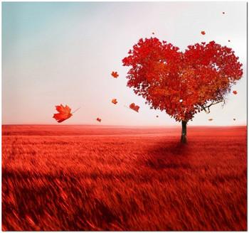 притча сердце