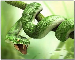 Притча змея