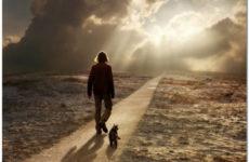 Дорога в рай