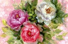 Поле роз