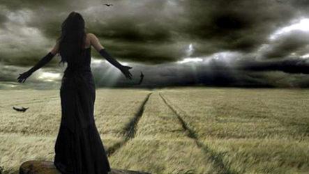 Дорога в Рай заросла травой