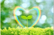 Исцеляющий импульс любви