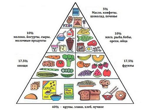 принцип правильного питания