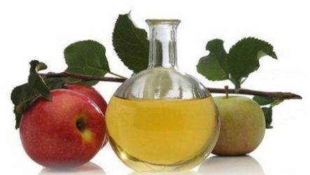 Яблочный уксус. Полезные свойства. Рецепты.